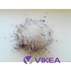 Brmbolec bielo-hnedý melír