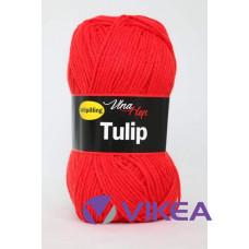 TULIP 4008 - červená
