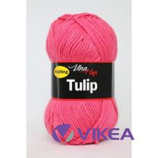 TULIP 4047 - ružová