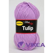 TULIP 4055 - levanduľová