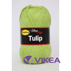 TULIP 4145 - jarná zelená