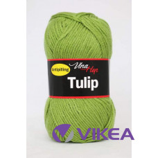 TULIP 4156 - zelená